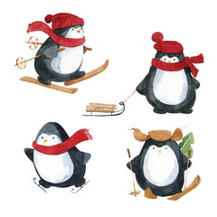 Set of penguins winter sports. Watercolor hand drawn.