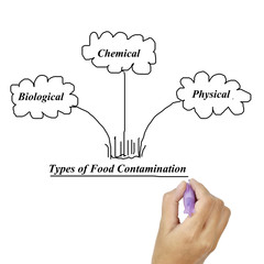 Types of food contamination image for use in manufacturing