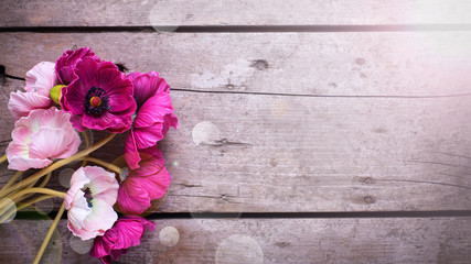 Pink flowers  on vintage wooden background.