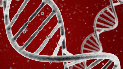 Double helix of DNA visible under microscope  medical background.
