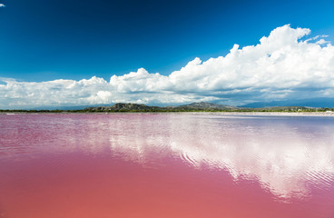Pink water salt lake in Dominican Republic