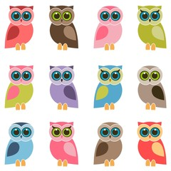 set of colorful owls and owlets