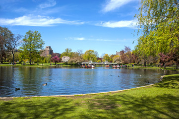 Summer day in the Boston Common