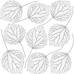 Wall Mural - contoured aspen leaves