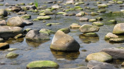 photo of drying river with many revealed stones in summer
