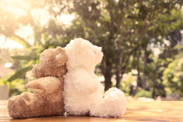 Couple teddy bears in love sitting on wooden table in the garden
