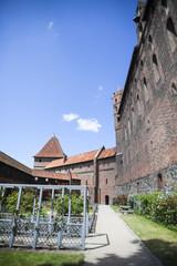 Rose garden at Malbork castle