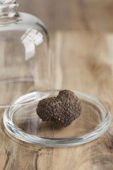 Fresh whole black truffle