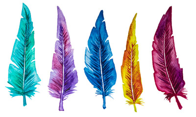 Set of multicolored feathers. Watercolor.