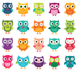 Poster Owls cartoon Cute cartoon owls collection