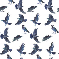 Crows seamless pattern. Watercolor hand drawn.