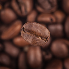 Square image coffee background close-up. Focus on one grain