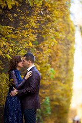 beautiful wedding couple in park. kiss and hug each other