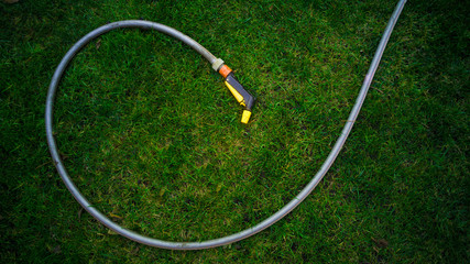 Garden hose lying on green grass at garden