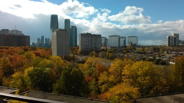 Mississauga, CA during fall