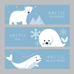 Arctic Banner, Polar Bear, Seal, Beluga Whale, Winter, Nature Travel and Wildlife