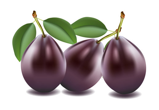 Three plums on white background