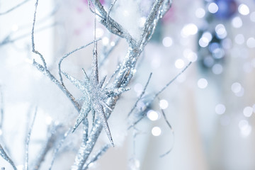 Silver Christmas star on the branch of tree. Winter holidays concept