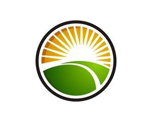 sun agriculture logo template