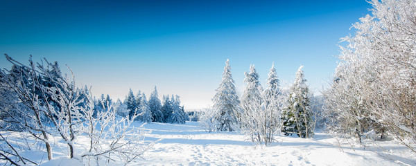 Photo sur Aluminium Bleu ciel Paysage d'hiver