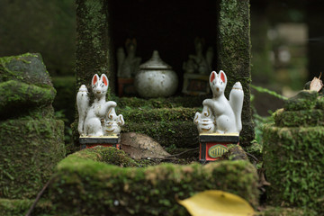 Miniature fox statues at Sasuke Inari Shrine in Kamakura