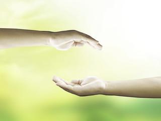 Human open empty hands over blurred nature background