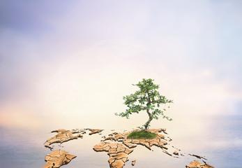 dry world map engender Moisturizing makes the green tree grow ov