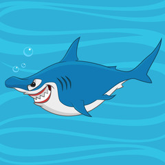 hammerhead shark. Vector illustration.