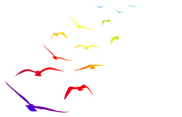 gabbiani, volare, volo, arcobaleno, pace