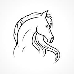 Vector horse