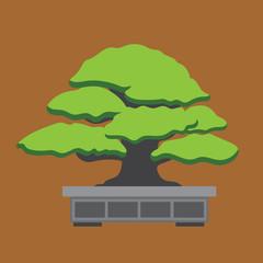 Image bonsai. flat design