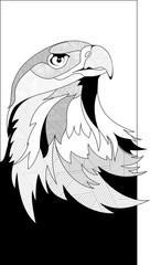 Fototapete - Eagle head in sketch interpretation