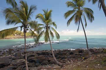 Les îles du Salut - Guyane
