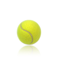 Wall Mural - Tennis ball with reflection isolated on white background.