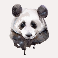 Panda.Watercolor illustration Vector