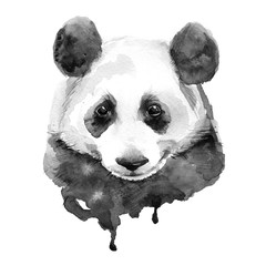 Panda.Black and white. Isolated