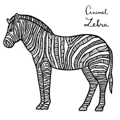 Stylized vector Zebra, zentangle isolated on white background.