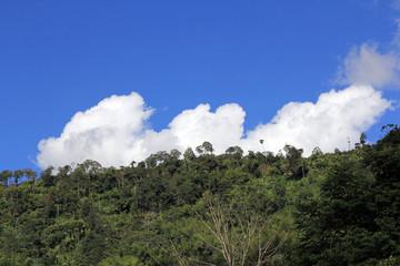 Bright sky / Brigth clear sky at Phetchabun, Thailand
