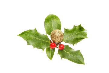 Holly with bauble and berries