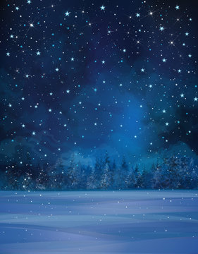Vector winter night scene, starry sky, snow and forest backgroun