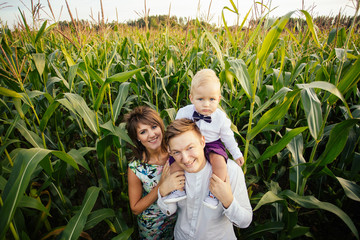 Happy family - mom, dad and son, standing in a large corn field in the Summer.