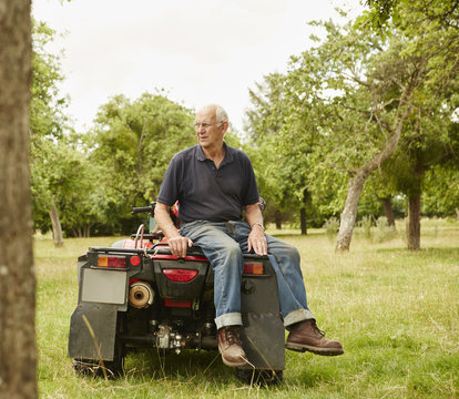 A farmer sitting on the back of a quad bike in a field surveying his land and his animals.