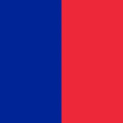 Flag of Paris, France