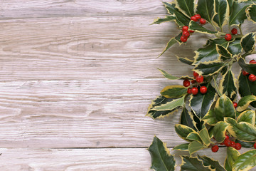 Holly tree garland on white wooden background