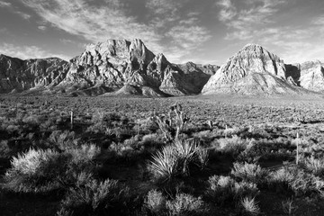 Geologic Rock Formations Red Rock Canyon Las Vegas USA