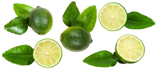 set of fresh green kaffir lime fruits isolated