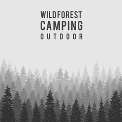 Vector wild coniferous forest background. Outdoor camping design template