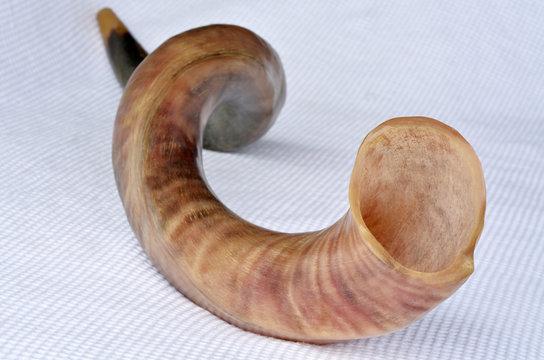 Shofar (horn)