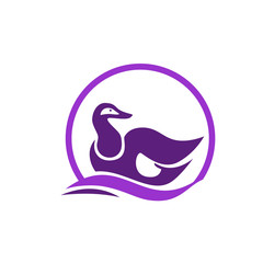 purple goose