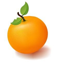 Mandarin isolated